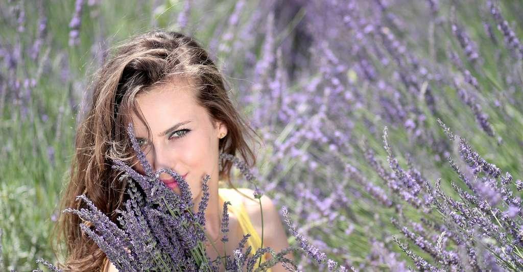 Selon les chercheurs, c'est bien l'odeur de la lavande qui est relaxante. © AdinaVoicu, Pixabay, CC0 Creative Commons
