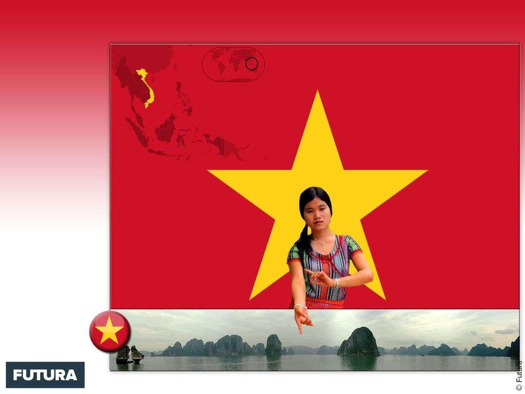 Drapeau : Viêt Nam