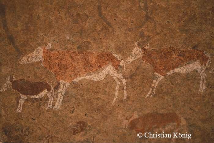 Peintures rupestres du Brandberg. © Christian König, DR