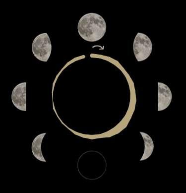 Les cycles du sommeil en fonction du cycle de la Lune. En haut, pour des personnes vivant à la campagne et avec un accès à l'électricité restreint. En bas, pour des personnes vivant en ville. © Université de Washington