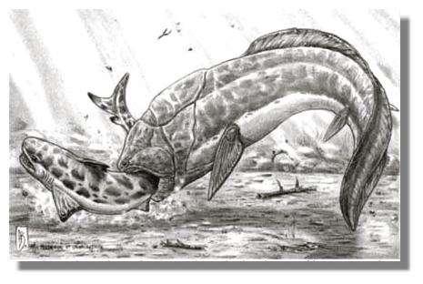 En Amérique du Nord, au Dévonien supérieur, le placoderme Holdenius attaque le requin primitif Ctenacanthus . © Dessin Alain Beneteau