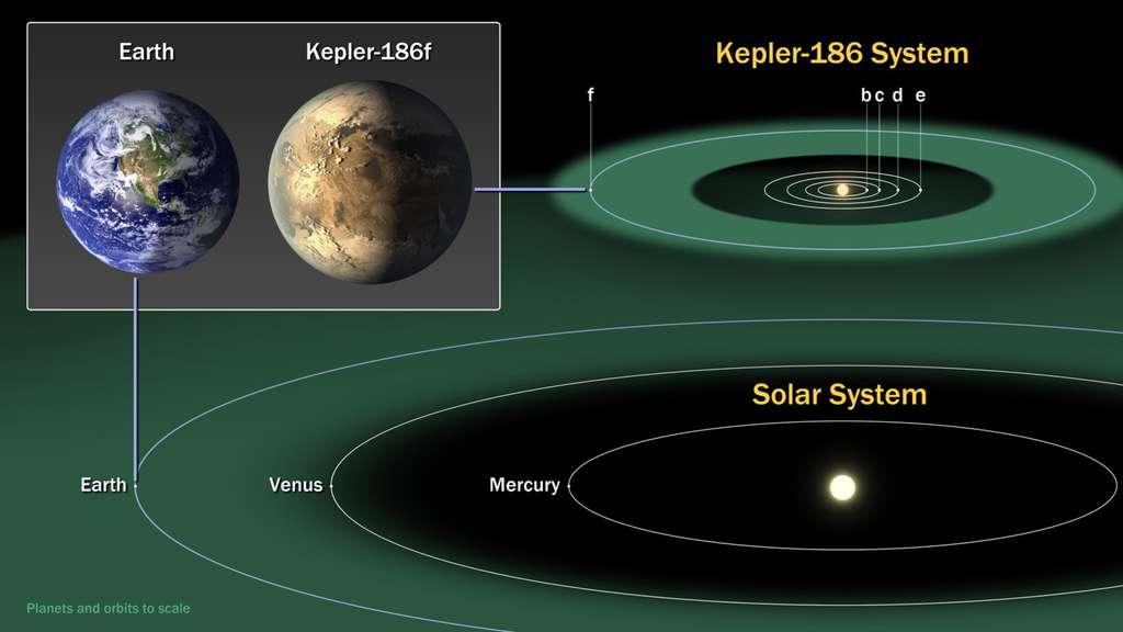 Le système planétaire de Kepler-186, une naine rouge. Dans notre galaxie, 70 % des étoiles sont de ce type. © Nasa Ames, Seti