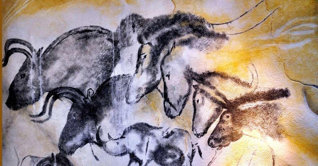 Grotte Chauvet détail des chevaux peints. © Thomas T., Wikimedia commons, CC by-sa 2.0