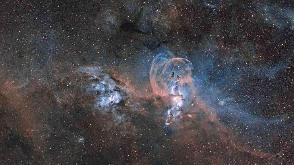 Comme dans les nuages, on peut parfois voir des formes dans les nébuleuses. Ici, «La nébuleuse de la Statue de la Liberté» (Statue of Liberty Nebula). © Ignacio Diaz Bobillo