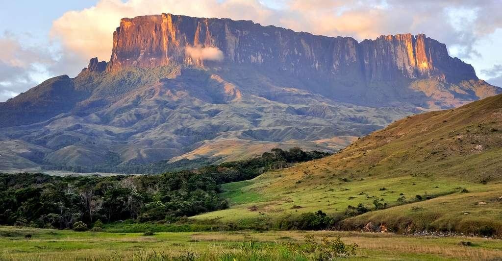 Kukenan Tepuy au Gran Sabana National Park, Venezuela.© Paolo Costa Baldi GFDL/CC-BY-SA 3.0