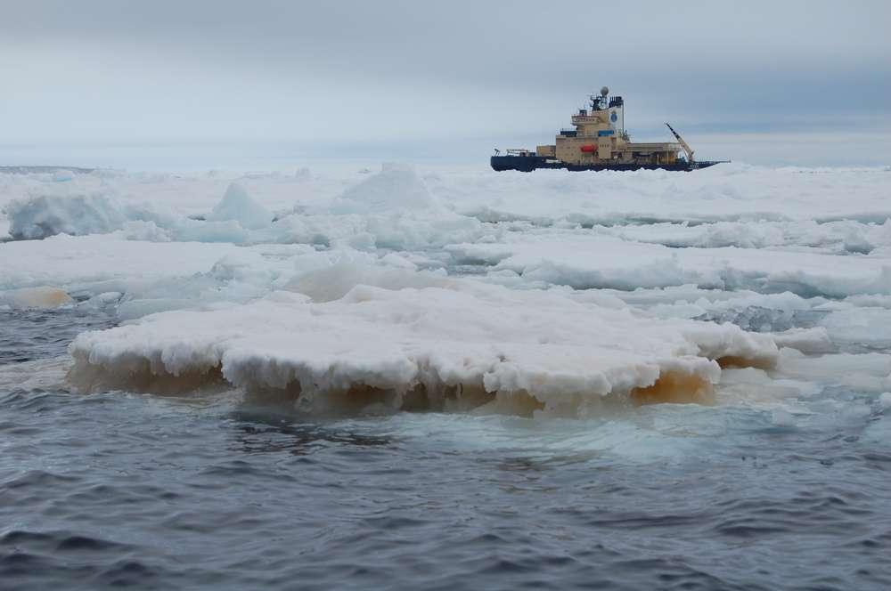 L'équipe du chercheur Ellery Ingall s'est rendue en Antarctique durant six semaines à bord du brise-glace suédois Oden, pour collecter des échantillons d'eau. © Georgia Tech