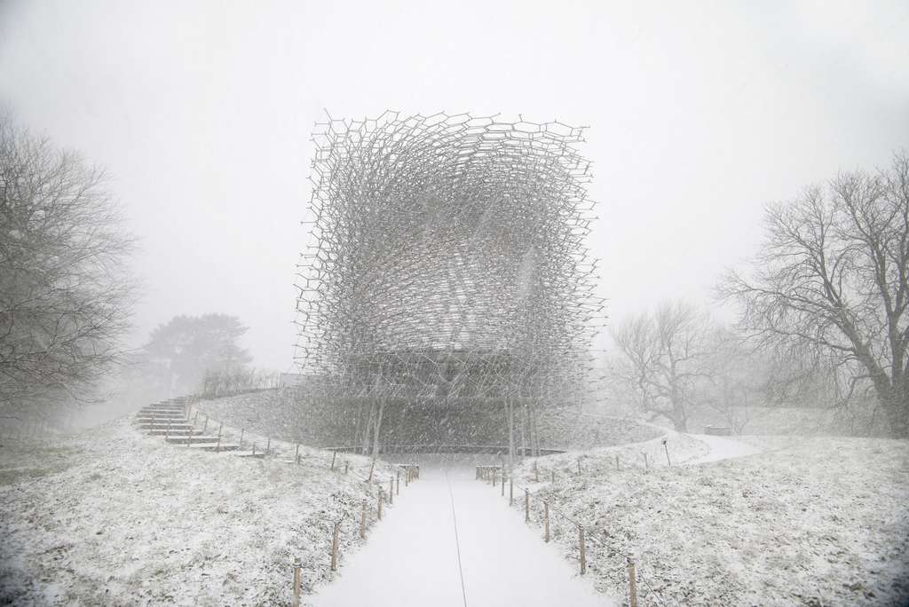 The Hive, Jardin botanique royal de Kew (Royaume-Uni) par Wolfgang Buttress. © Omer Kanipak