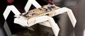 L'un des robots imprimables du MIT. © MIT, Jason Dorfman/CSAIL