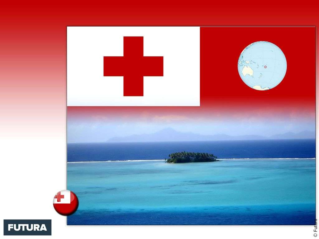 Drapeau : Tonga