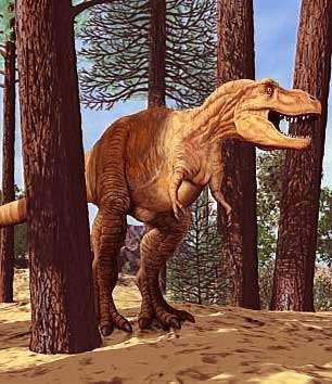 Le T. rex était-il à sang chaud ou à sang froid ? © DR