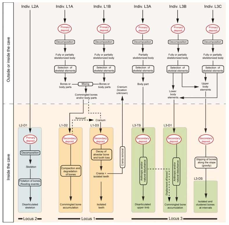 Les pratiques funéraires observées dans la grotte de Cussac — ici récapitulées dans un diagramme — ont toutes déjà été observées ailleurs. Mais c'est la première fois qu'elles apparaissent ensemble, de manière aussi complexe et associées à de l'art. © Sacha Kacki et al., Proceedings of the National Academy of Sciences