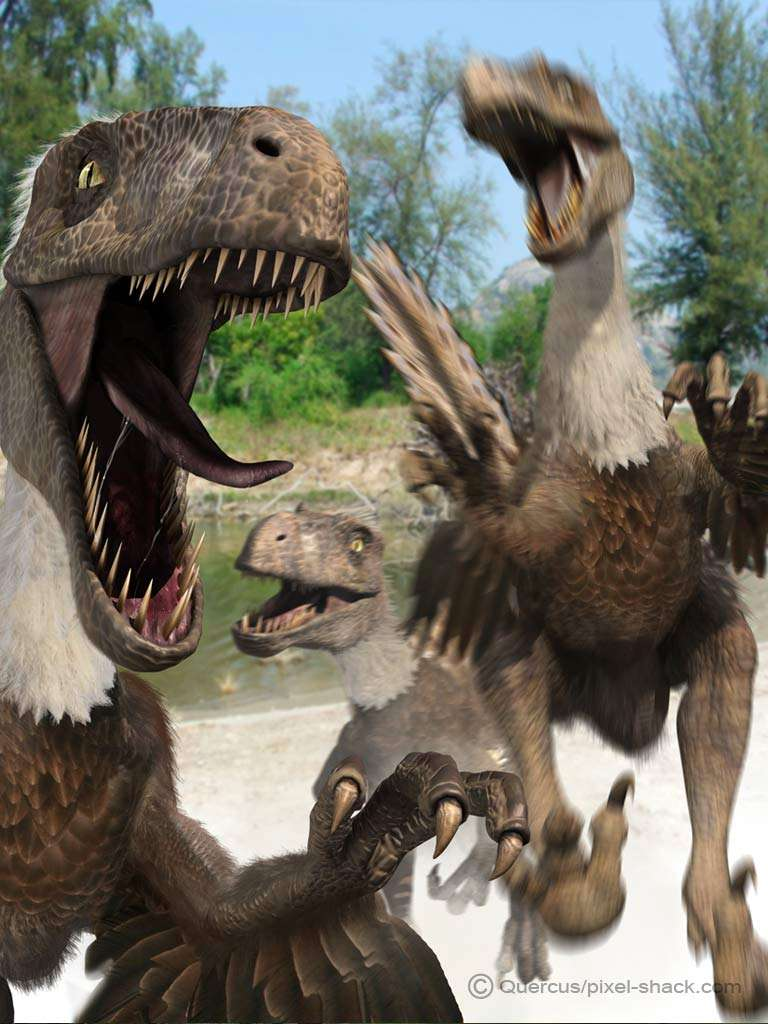 Le Deinonychus, un petit dinosaure aux griffes terrifiantes