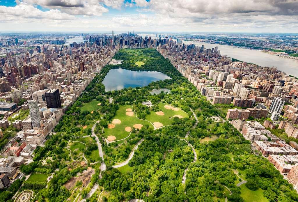 La superficie de Central Park : 3,41 km2. © AntonioLopez, fotolia