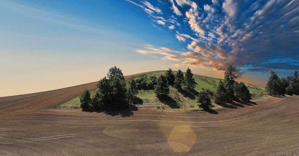 Avoir un temps d'avance sur la météo peut être particulièrement utile aux agriculteurs. © Free-Photos, Pixabay License