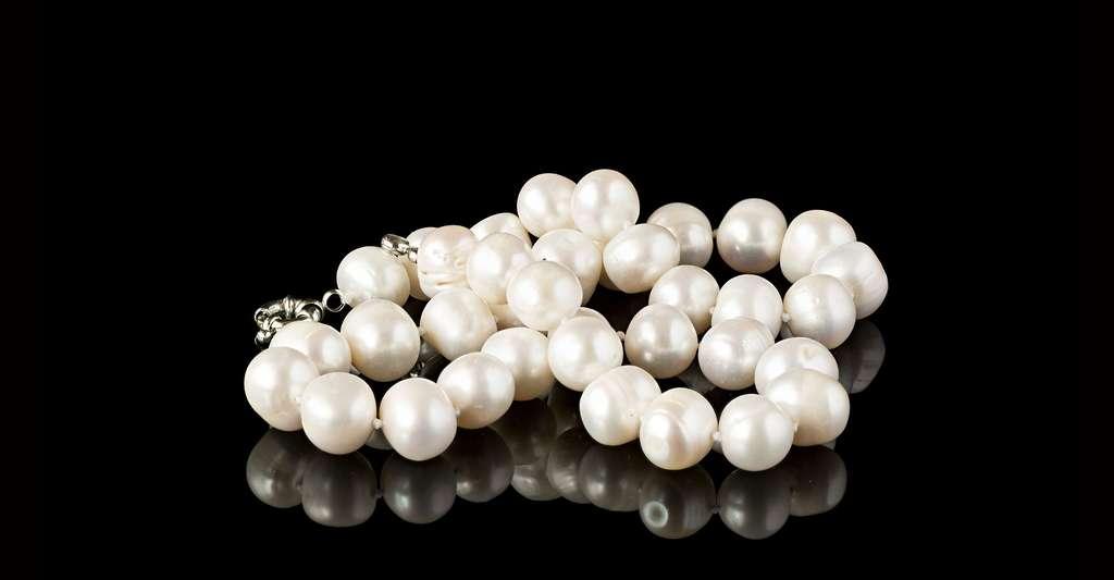 Les perles de culture sont issues des huîtres perlières. © Rozakov Dmitry, Shutterstock