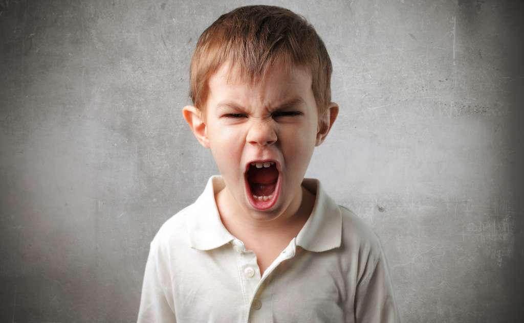 Le cerveau des jeunes enfants n'est pas suffisamment mature pour parvenir à canaliser leur colère. © olly, Fotolia