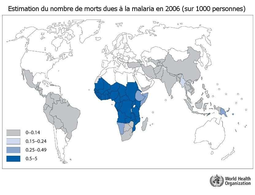 Nombre de morts à cause de la malaria en 2006, sur des populations de 1.000 personnes. © Organisation mondiale de la santé, 2009