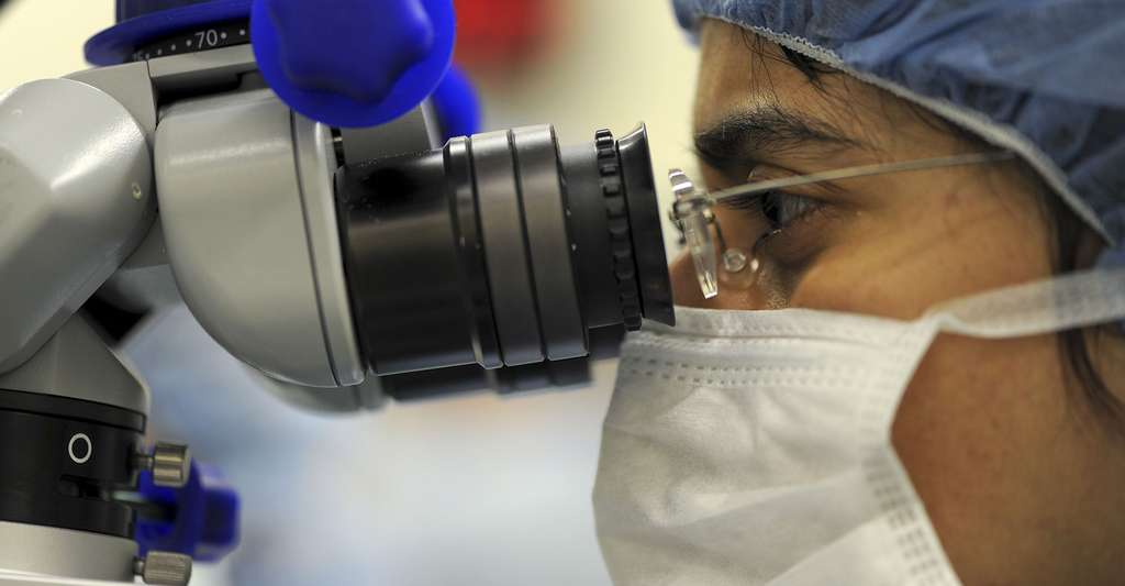 Techniques de fabrication de vaccins. © Skeeze CC0, Domaine public