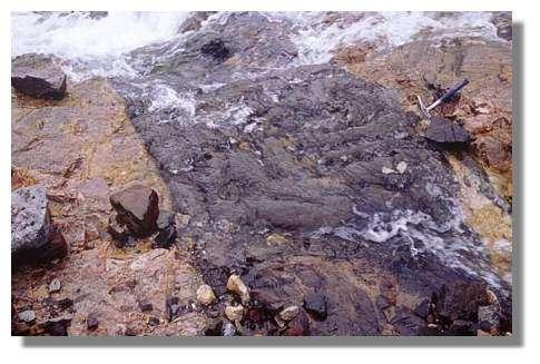 Filon d'andésite (noir) recoupant le massif rhyolitique (roche claire) occupant l'intérieur de la caldera du volcan El Altar. Equateur. © IRD/Jean-Philippe Eissen