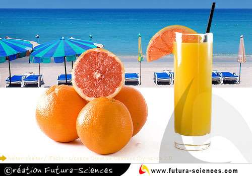 Orange tropicale