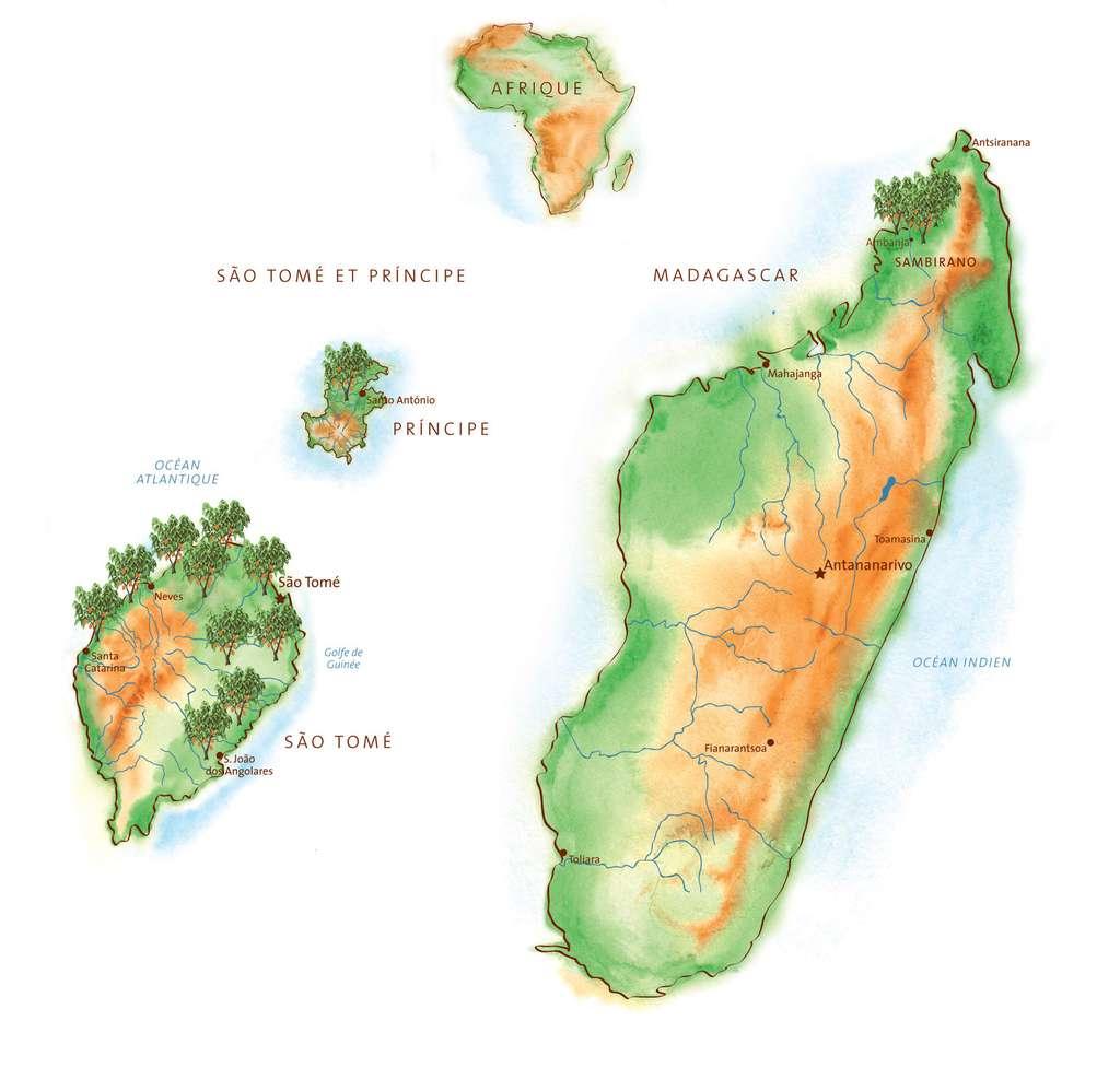 La production de cacao fin en Afrique, de l'archipel de Sao Tomé et Principe, au large du Gabon, à Madagascar. © Gwendolin Butter