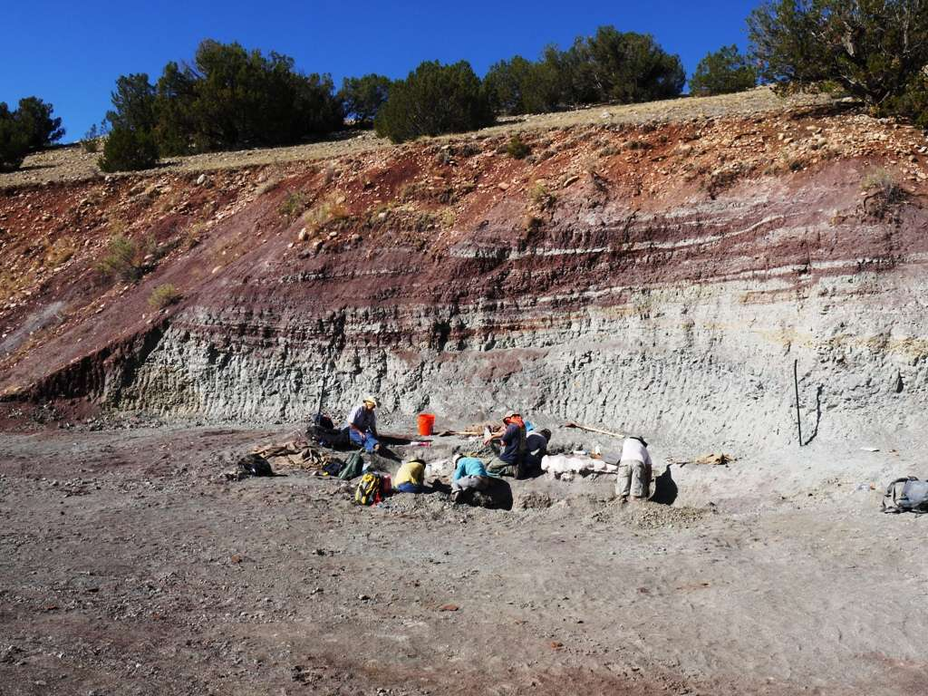 Une équipe en plein travail d'excavation de fossiles de vertébrés dans la célèbre carrière Hayden à Ghost Ranch, Nouveau-Mexique. Ces roches contiennent en abondance des fossiles de poissons, de reptiles ainsi que de pollens et du charbon de bois, qui ont tous été utilisés pour reconstruire l'écosystème et l'environnement de cette région il y a 212 millions d'années. © Randall Irmis