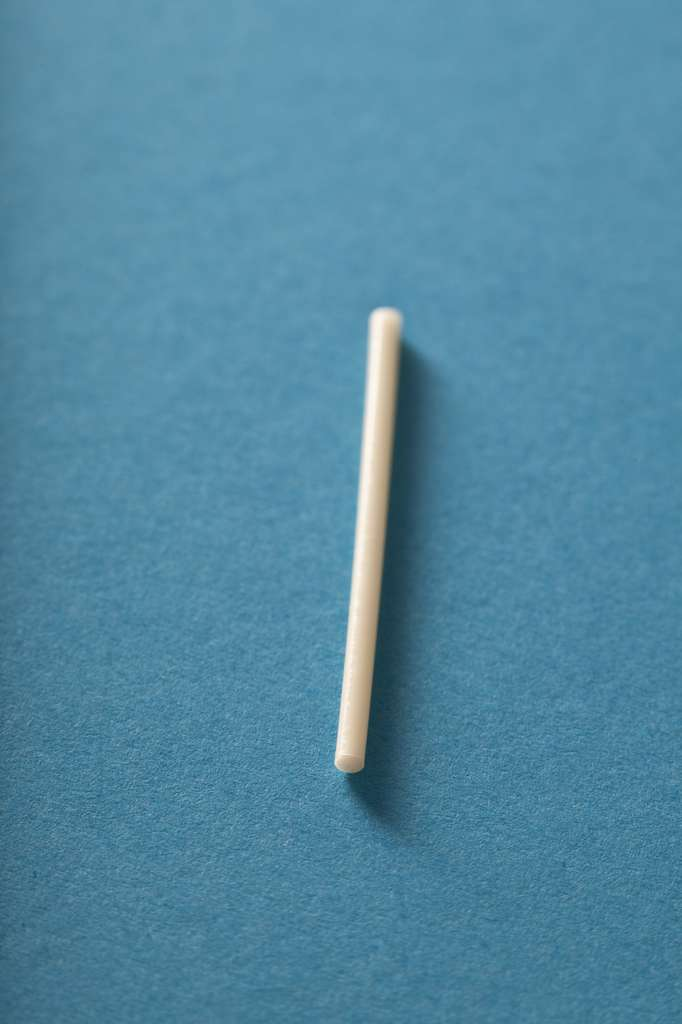 L'implant est de forme cyclindrique. © RFBSIP, Fotolia