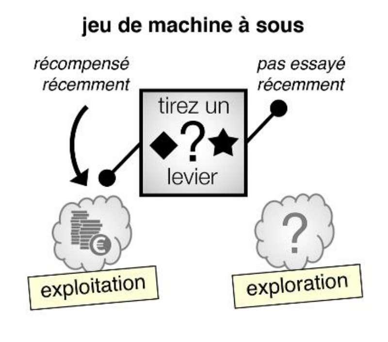 Les participants au jeu de machines à sous avaient deux choix, les symboles étant associés à des récompenses incertaines. Les chercheurs ont constaté que plus de la moitié des choix habituellement considérés comme relevant de la curiosité était en réalité due à des erreurs d'évaluation. © Inserm