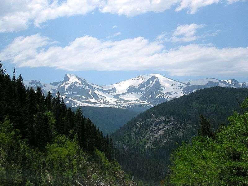 Les montagnes Rocheuses dans le Colorado abritent des colonies de marmottes à ventre jaune. Crédits DR.