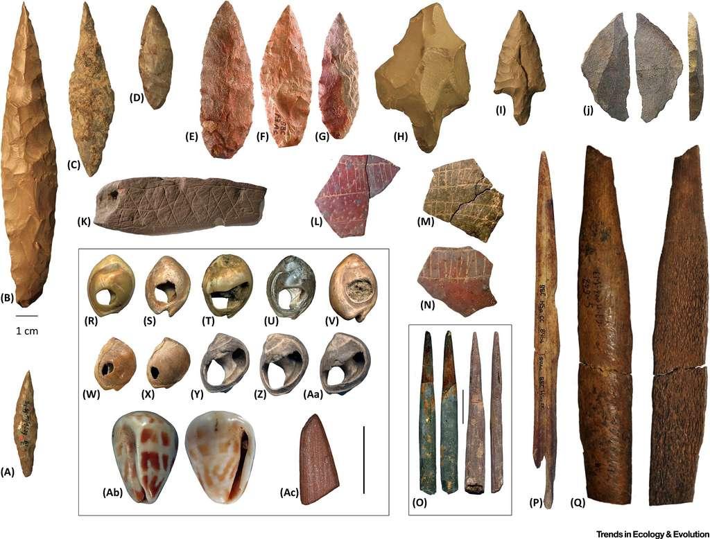 Diversité culturelle des premiers africains, par leurs outils et objets. La barre représente 1 cm. © Eleanor Scerri/Francesco d'Errico/Christopher Henshilwood/Trends in Ecology & Evolution 2018