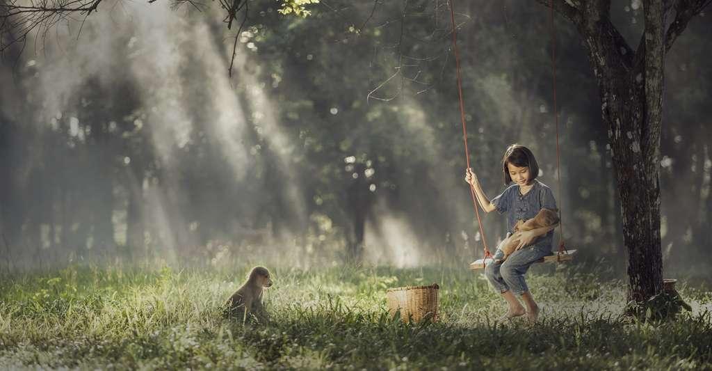 Il semblerait que certains animaux soient capables de ressentir de l'envie. © stveak, Fotolia