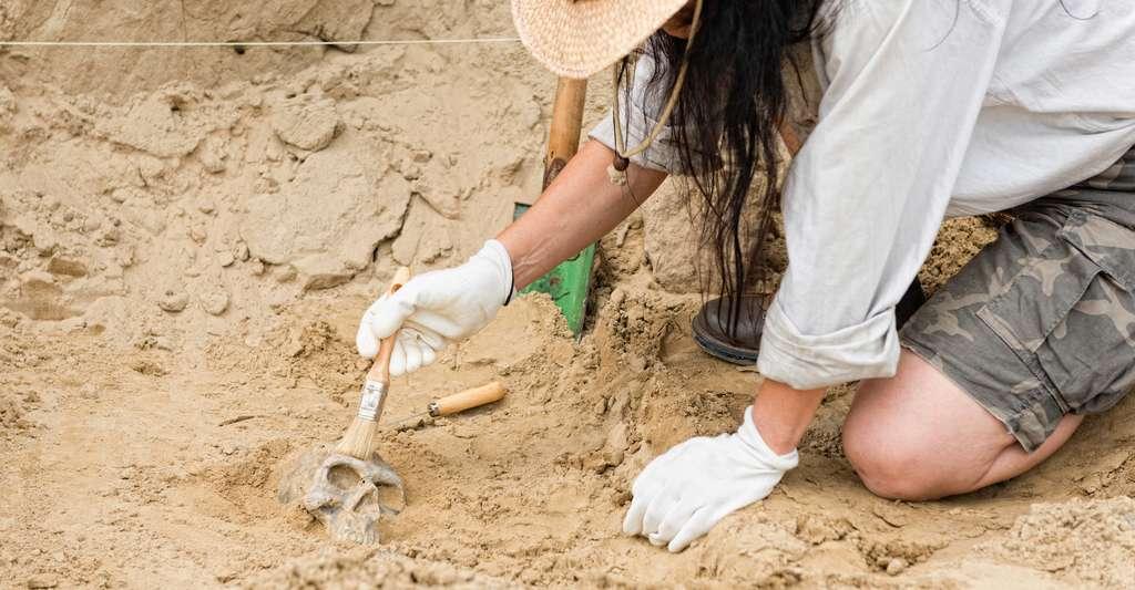 Habituellement, des travaux de fouille permettent aux archéologues d'en apprendre plus sur le passé. Mais dans la grotte de Cussac, ils n'ont accès qu'à des observations in situ ou à des photographies et à des modèles 3D pour ce faire une idée de ce qui s'est joué là il y a plusieurs milliers d'années. © Microgen, Adobe Stock