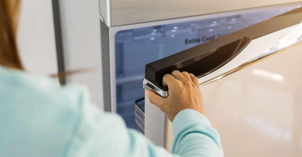 Un réfrigérateur régulièrement dégivré, bien placé — c'est-à-dire ni trop près d'un mur, ni trop près d'une source de chaleur — et qu'on ne laisse pas, bien sûr, ouvert inutilement, permet de maîtriser sa consommation d'électricité. © Kittiphan, Fotolia