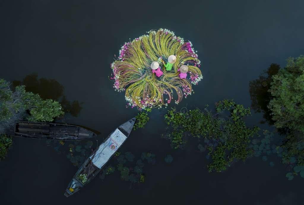 Les Fleurs sur l'eau. © Khanh Phan