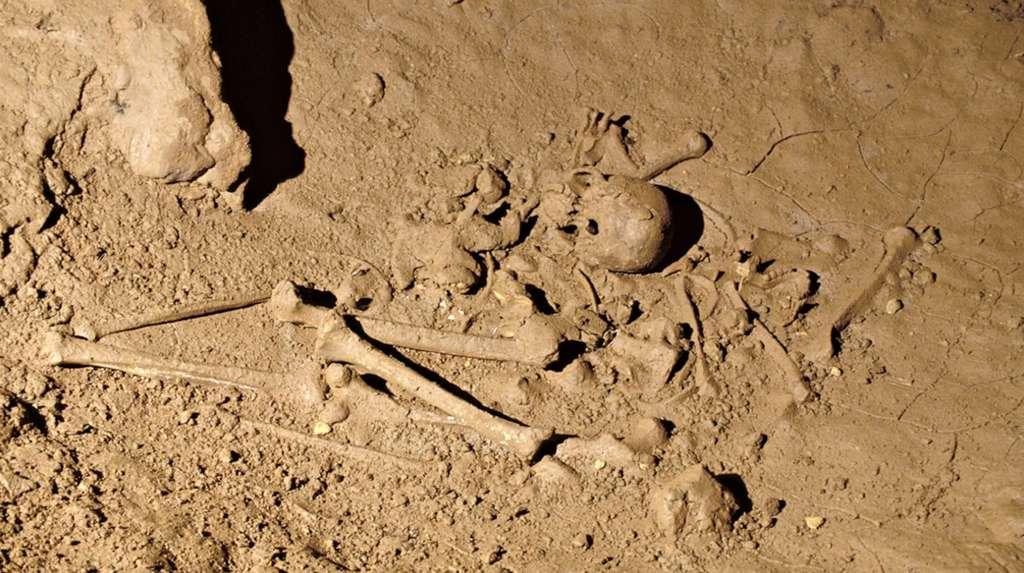 Restes hulmains dans une bauge de la grotte de Cussac. © P Mora, PCR Cussac, Ministère de la Culture