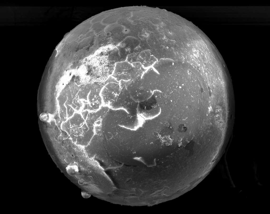 Les perles de verre trouvées par Mike Meyer semblent riches en métaux exotiques. Un autre indice de leur origine extraterrestre. © Mike Meyer, Université de Harrisburg