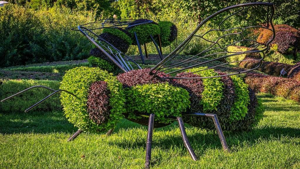 Sculpture végétale d'insectes en hommage au plan Maya