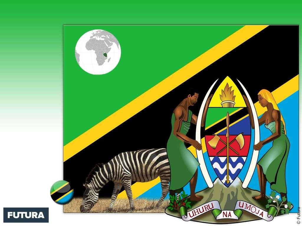 Drapeau : Tanzanie