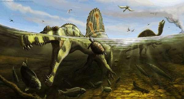Reconstitution de Spinosaurus menant une vie semi-quatique. © Brian Engh