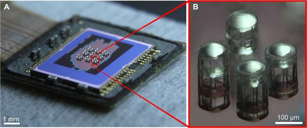 Le capteur photo avec ses microlentilles réparties par groupe de quatre ayant chacune une longueur focale différente. © Thiele et al, Science Advances