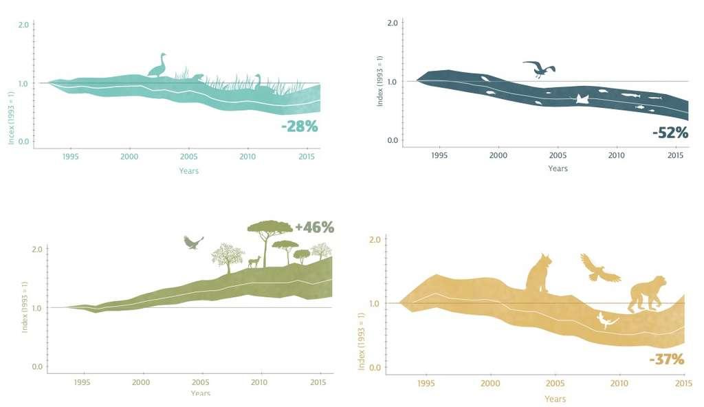 Évolution des espèces d'eau douce (bleu), des espèces marines (bleu marine), des espèces terrestres (vert) et des espèces endémiques (jaune) entre 1993 et 2016. © La Tour du Valat