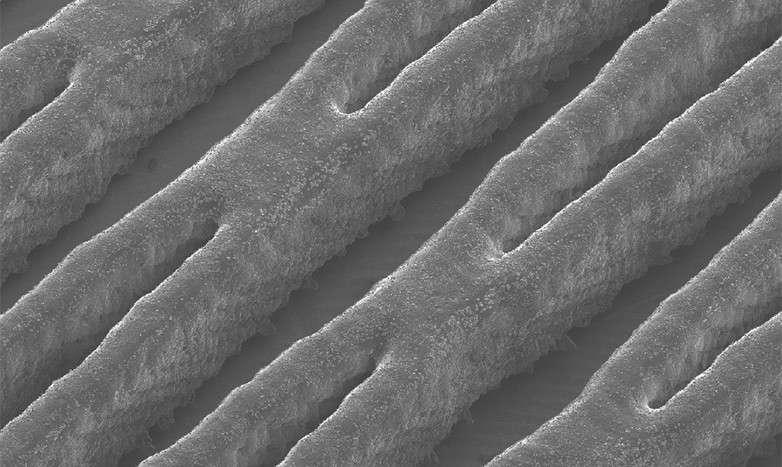 Une vue agrandie de la structure du canal de circulation en polymère fabriqué par impression 3D. C'est lui qui guide l'écoulement des électrolytes liquides à travers les électrodes poreuses. © Marschewski et al. Energy and Environmental Science 2017