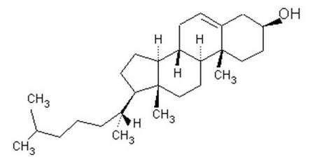 Molécule de cholestérol.