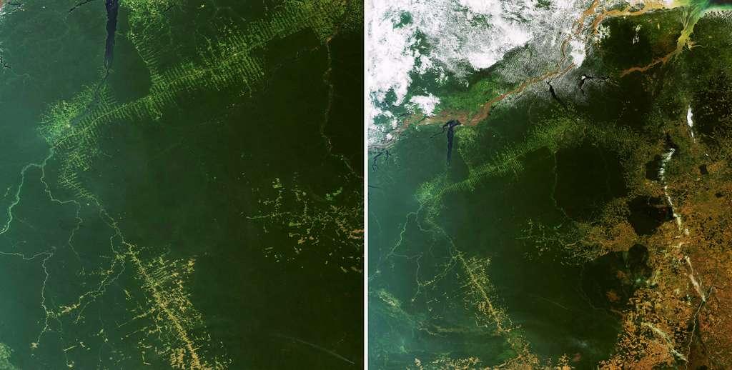 Progression de la déforestation dans le Mato Grosso, au sud du Brésil, au fil de l'urbanisation et de l'extension des terres agricoles, suivie par le satellite Envisat. © Astrium GEO-Information Services