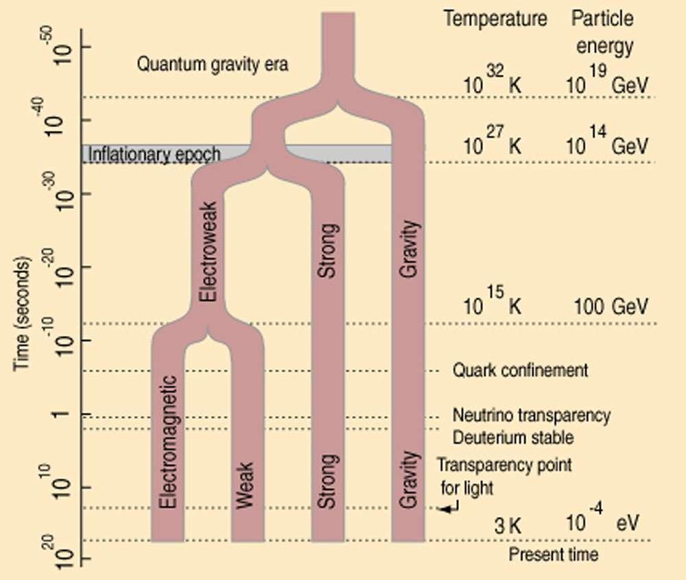 Les quatre interactions fondamentales (gravité, électromagnétisme, interactions forte et faible), connues aujourd'hui dans notre univers à basse température (bas du diagramme) pourraient progressivement s'unifier à très haute énergie et température, donc en remontant vers le Big Bang (haut du diagramme). La première unification (fusion de la force faible et de l'électromagnétisme en la force électrofaible) a été expérimentalement réalisée au Cern. © Domaine public
