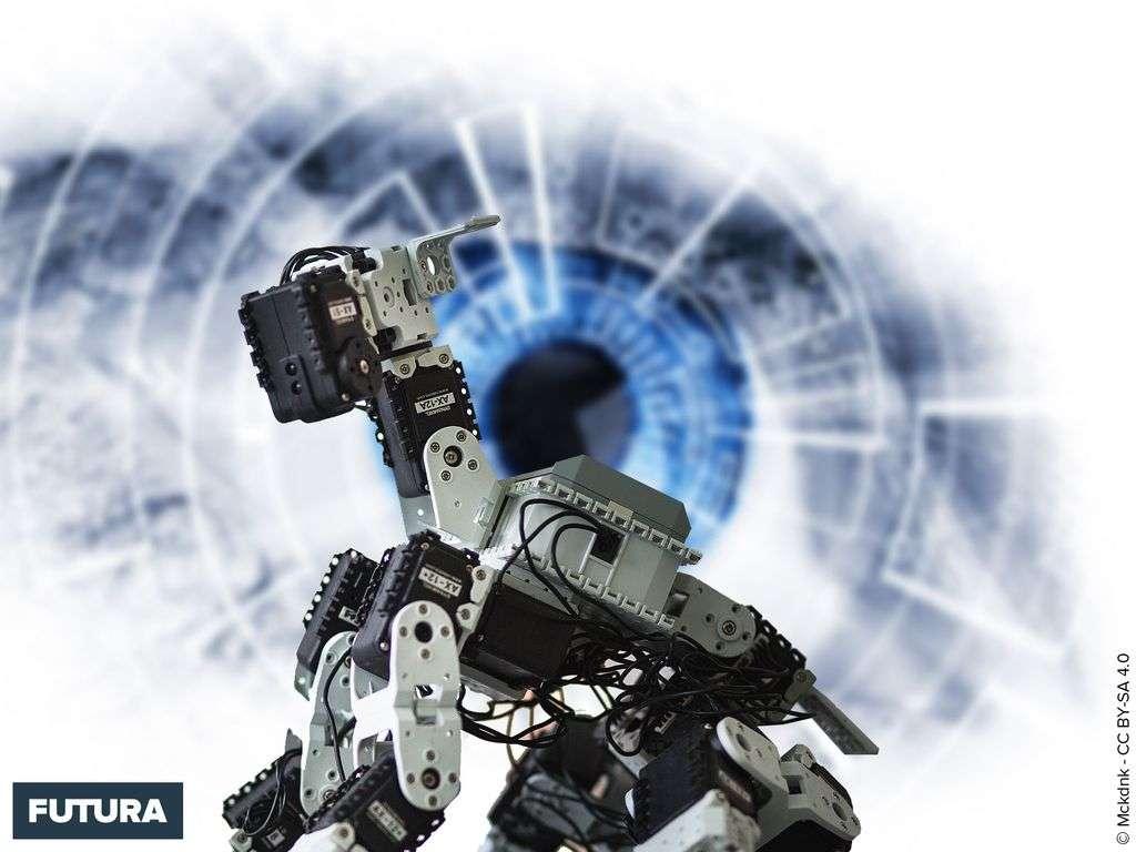 L'ami de l'homme, le robot chien
