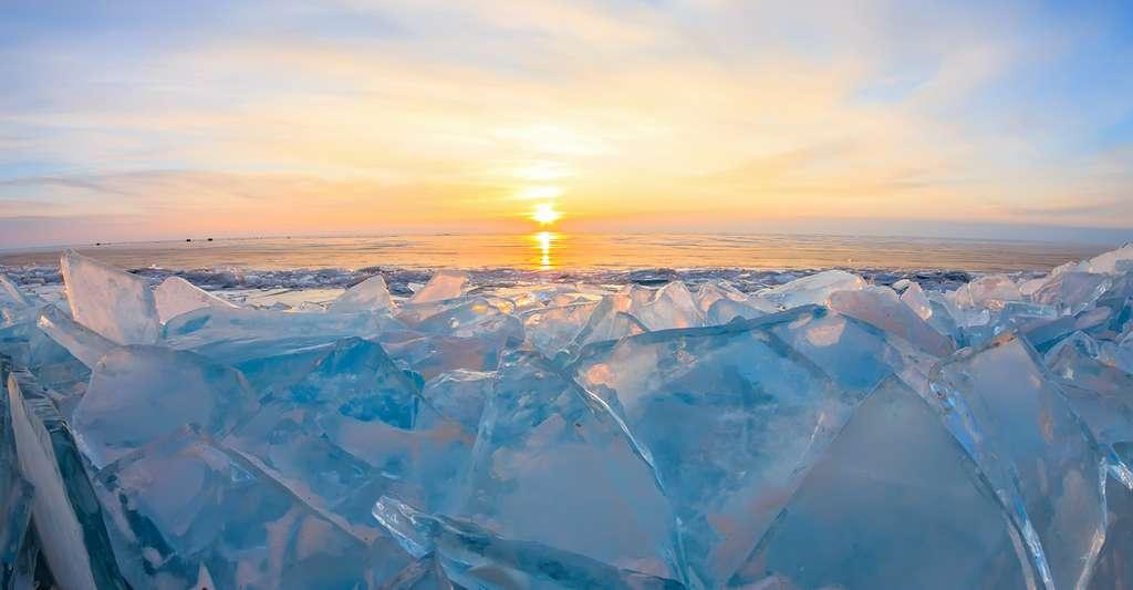 En Sibérie, la chaleur a déclenché des incendies qui, fin juin, avaient ravagé quelque 1,15 million d'hectares de forêt et rejeté environ 56 millions de tonnes de CO2 dans l'atmosphère. C'est plus que les émissions annuelles de la Suisse ou du Portugal. La chaleur a aussi accéléré la fonte du pergélisol et contribué à une invasion de papillons de soie dont les larves s'attaquent aux conifères. © Baikal360, Adobe Stock