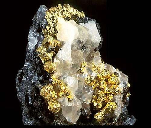 Or natif sur quartz.