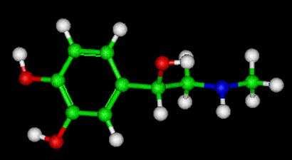 Molécule d'adrénaline