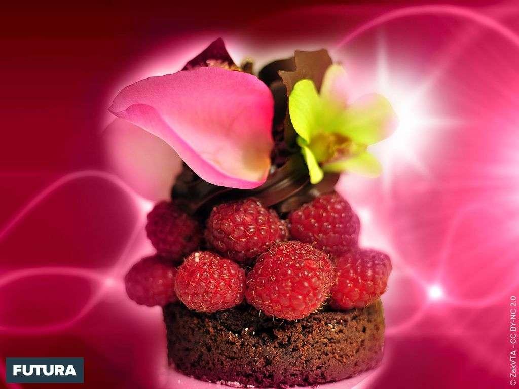 Savoureux moelleux chocolat-framboise